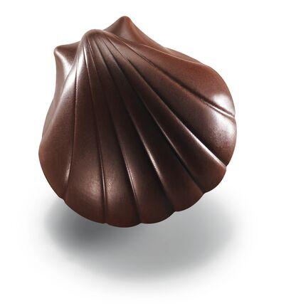 Bomboane de ciocolata Coquillages Praline Noir 1,8kg