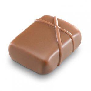 Bomboane de ciocolata Praline Fruite Craquant 2kg