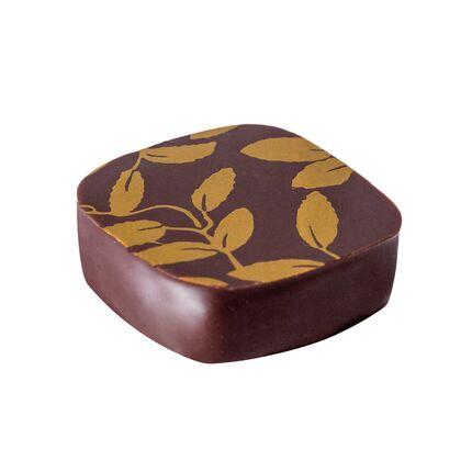 Bomboane de ciocolata Sensation Ganache The Jasmin 120 buc