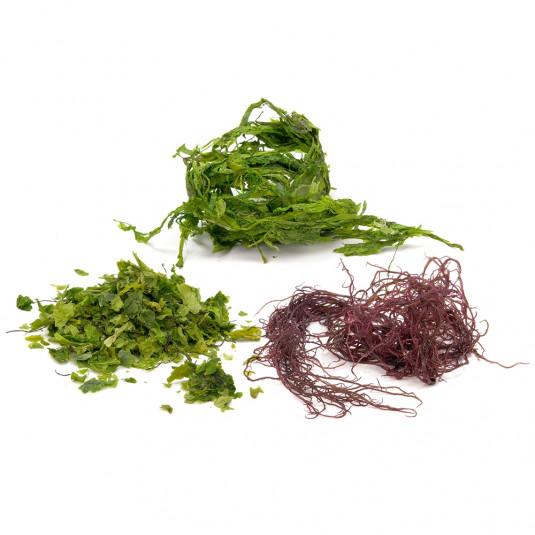 Amestec de alge marine uscate, Sosa