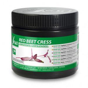Muguri de Sfecla rosie liofilizat (5g), Sosa