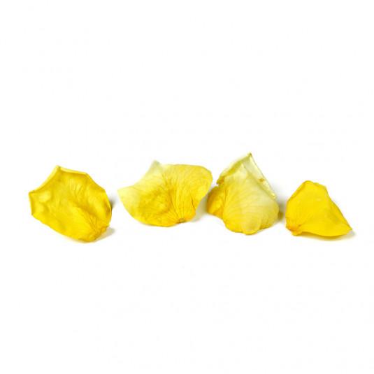 Petale de trandafir galben liofilizate (7g), Sosa