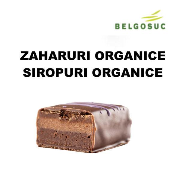 Zaharuri organice si siropuri organice Belgosuc